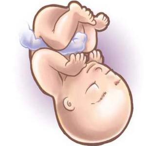 30 неделя беременности, развитие плода, норма веса ребенка