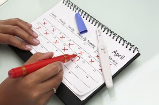 Калькулятор овуляции. Расчет календаря овуляции на 2 месяца.