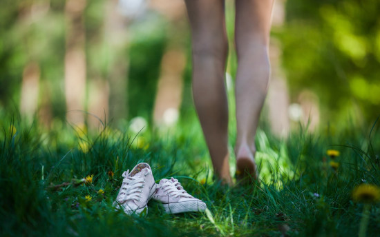 Куда ползёт клещ по моей ноге?