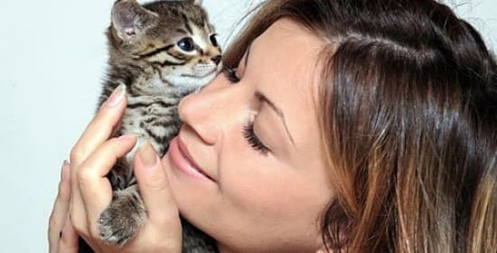 Аллергия на кошек (лечение аллергического ринита)