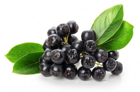 Вкусные рецепты из черноплодной рябины для беременных
