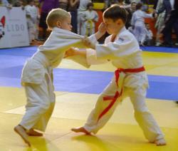 Боевые советы по выбору вида спорта для детей