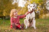 Заводим собаку – желание ребенка